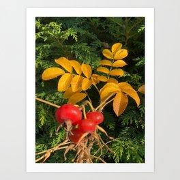Red and Orange Art Print