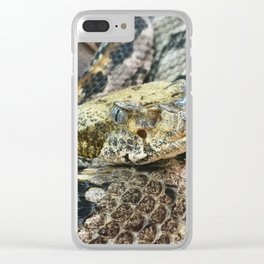 Timber Rattlesnake Close Up Clear iPhone Case