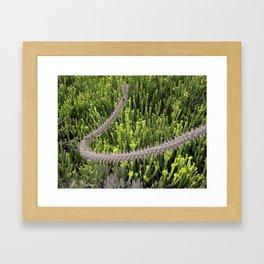 photo 4 Framed Art Print