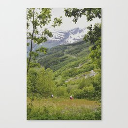 norway Canvas Print