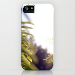 Leaves & Light iPhone Case