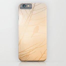 Subtle Bird and Tree Silhouette Glowing Orange Blue Sunlight iPhone Case