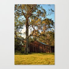 Rural Shed Canvas Print