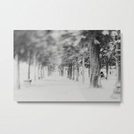 the Tuileries Garden, Paris Metal Print