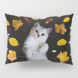 Kitty Harvest (Color) Pillow Sham