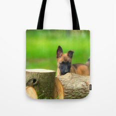 Cute Malinois Dog after the wood Tote Bag