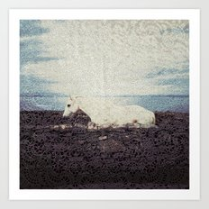 Horse by the Sea Art Print