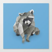 racoon Canvas Prints featuring Racoon. by Diana D'Achille