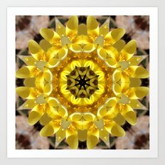 Golden crocus mandala Art Print