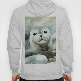 Curious seal on the pebbles Hoody