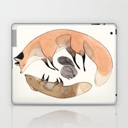 Apesanteur Laptop & iPad Skin