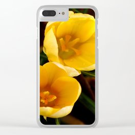 Yellow Crocus, Late Winter Clear iPhone Case