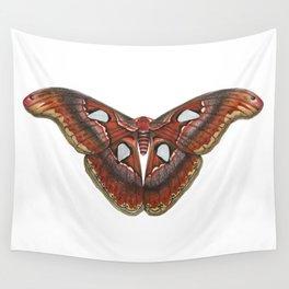 Atlas Moth Wall Tapestry