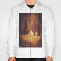 Forest Path Hoody