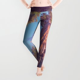 View to the sky Leggings