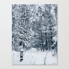 adventures are calling Canvas Print