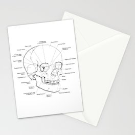 Labeled Pen and Ink Skull Stationery Cards
