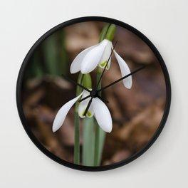 Snowdrop pair Wall Clock