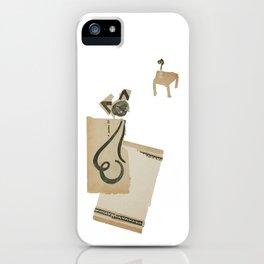 cat on a carpet iPhone Case