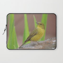 Yellow Warbler at the Fountain Laptop Sleeve