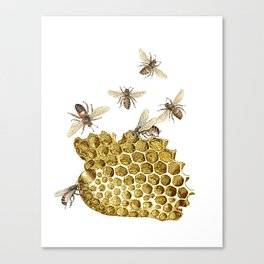 BEES and Honeycomb Canvas Print