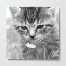Cat Picture in Black and White Metal Print