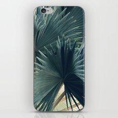 Bismarck #3 iPhone & iPod Skin
