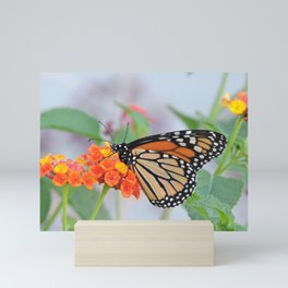 The Monarch Has An Angle Mini Art Print