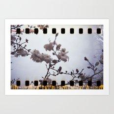 blooming sprockets Art Print