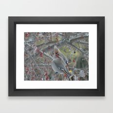 Love birds Framed Art Print