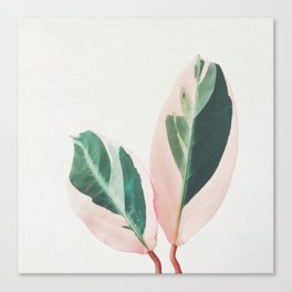 Pink Leaves I Canvas Print