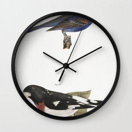 146 The Blue Grosbeak (Coccoborus ceruleus) 147 The Rose-breasted Grosbeak (Coccoborus ludovicianus) Wall Clock