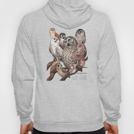 Owls of the Northeast Hoody