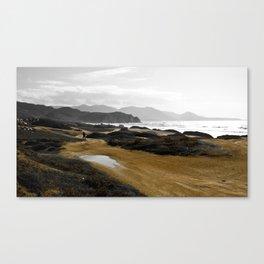 Terra_04 Canvas Print