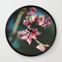 Peach tree in bloom Wall Clock