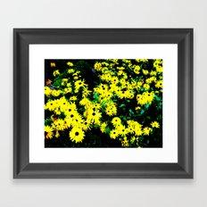 Yellow Flowers (Edited)  Framed Art Print