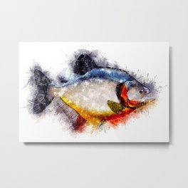 Red Bellied PIRANHA Watercolor Art for the Fishing Lovers and Anglers / Gifts for Fisherman Metal Print