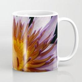 Nymphaea 'Rhonda Kay' V Coffee Mug
