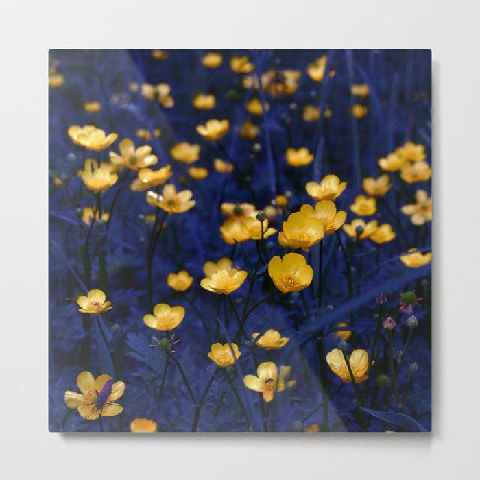 a sea of buttercups Metal Print