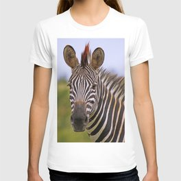 Zebra portrait, Africa wildlife T-shirt
