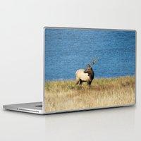 elk Laptop & iPad Skins featuring Elk by Becca Buecher