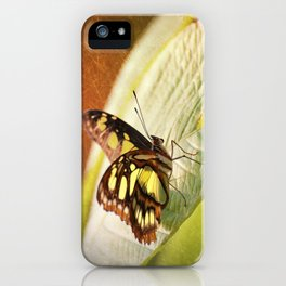 Butterfly - Ready for takeoff iPhone Case