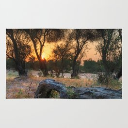 The Sunrise Rug
