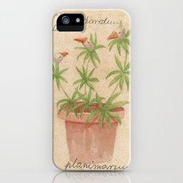 Planimarium - Anserini galium odoratum iPhone Case
