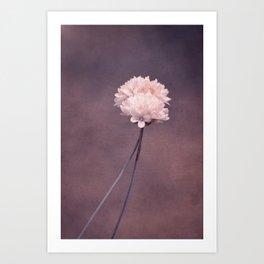 fall in love I Art Print