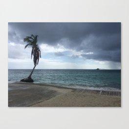 Palomino Island, Puerto Rico Canvas Print