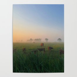 Par un matin de brume Poster