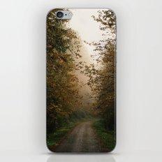 Oregon Fall Road iPhone & iPod Skin