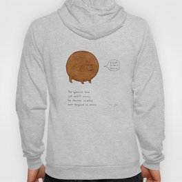 the spherical bear Hoody