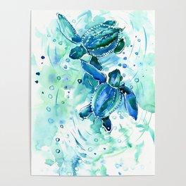 Turquoise Blue Sea Turtles in Ocean Poster